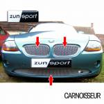 Zunsport Full Grille Set to fit BMW Z4
